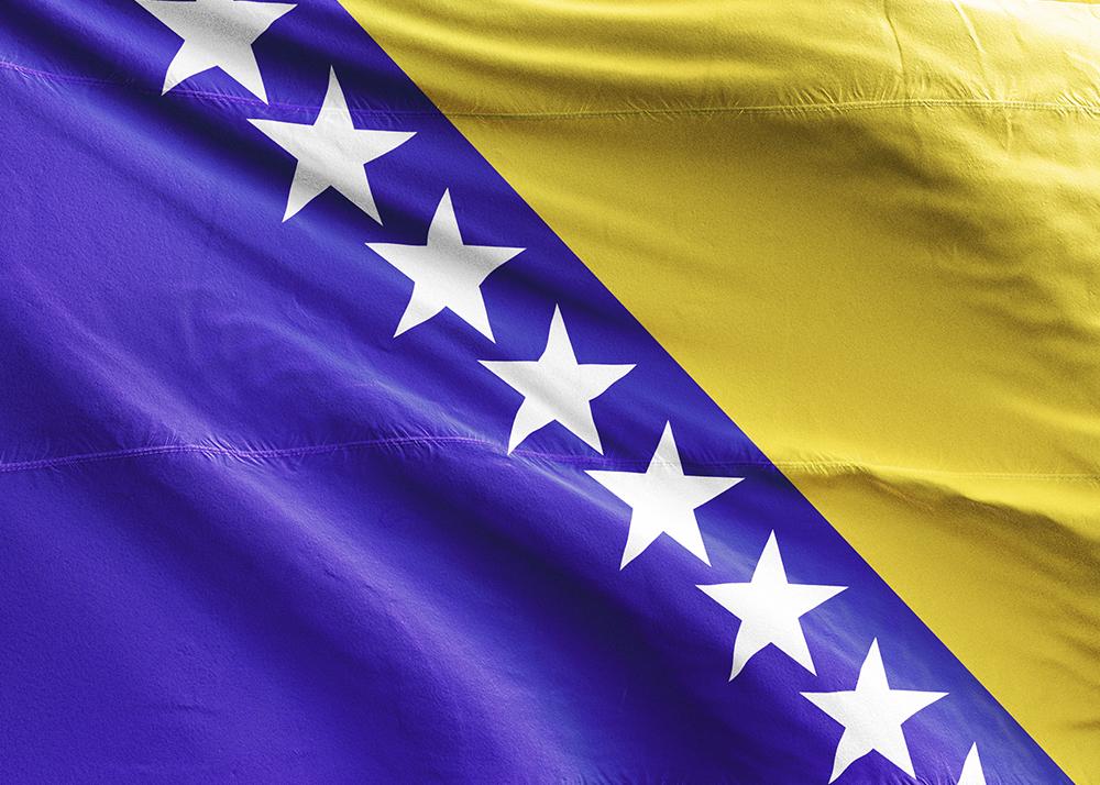 Bosnakça Seslendirme
