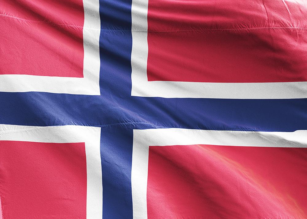Norveççe Seslendirme